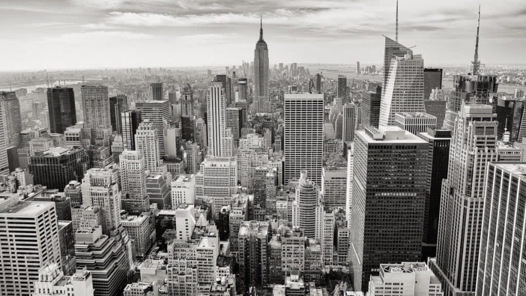 New York City SEO Specialist, New York SEO Consultant, Acme Web Agency